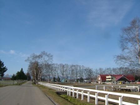 20061126-3.jpg