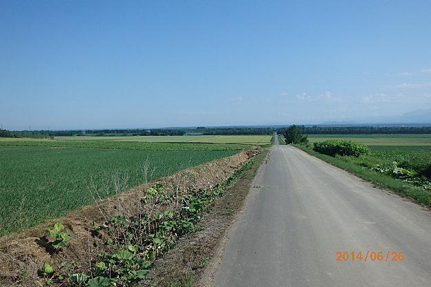 20140626-2.jpg
